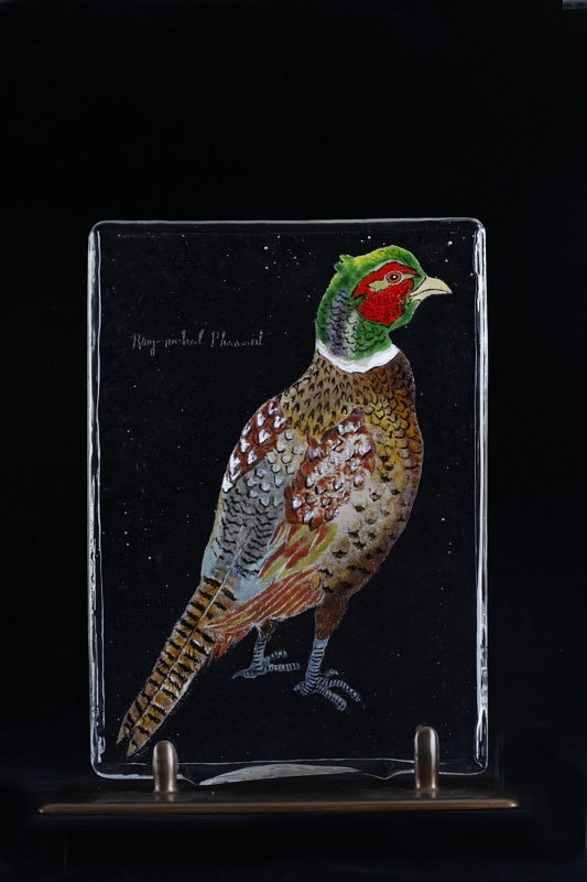 Mace Kirkpatrick, Bird Page: Ring-Necked Pheasant 2009, Glass